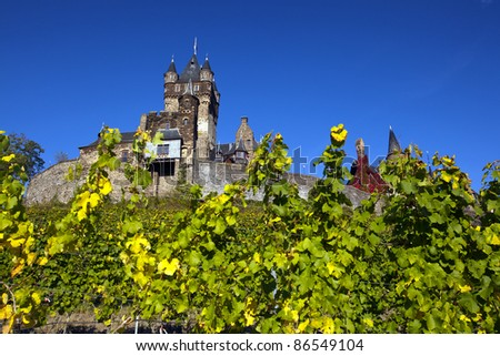 Cochem Castle in Germany behind wine grapes. - stock photo
