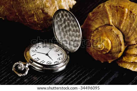 cockleshells and pocket watch