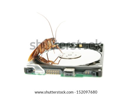 Cockroach climbing on hard disk drive to present about computer attacked from virus infection - stock photo