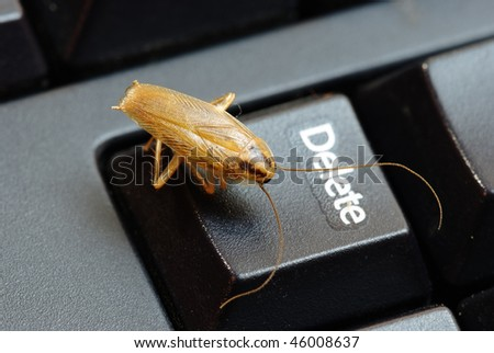 cockroach delete idea - stock photo