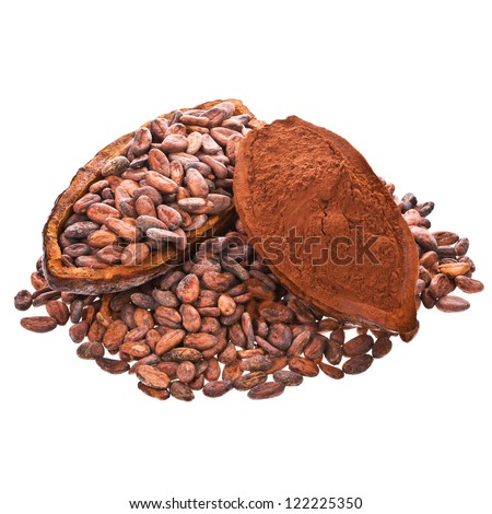 cocoa beans and cocoa powder into cocoa fruit isolated on white background - stock photo