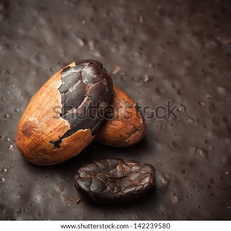 Cocoa beans closeup - natural ingredient for making chocolate. Three cacao beans on black chocolate. - stock photo