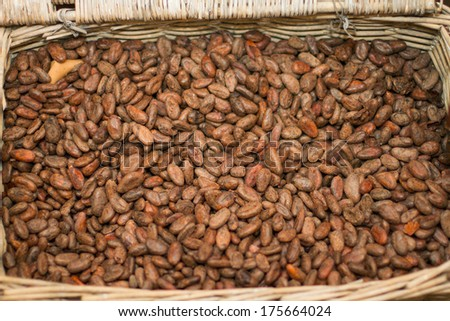 Cocoa beans in a basket - stock photo