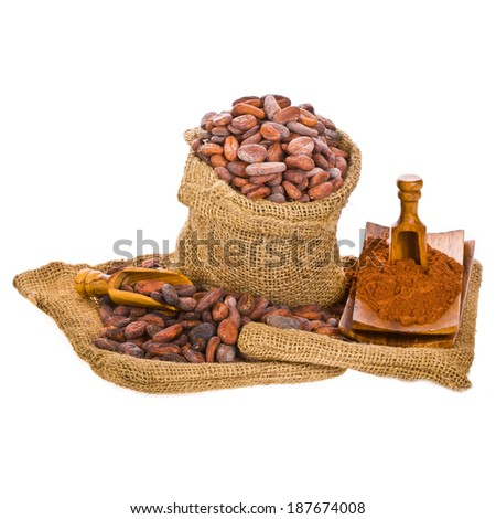 cocoa beans in bags of linen, cocoa beans with wooden spoon isolated on white background - stock photo
