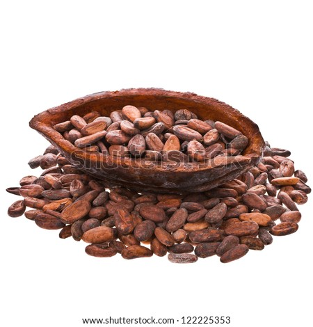 cocoa beans into cocoa fruit isolated on white background