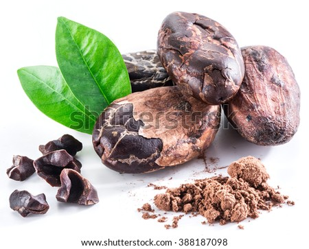 Cocoa beans isolated on a white background. - stock photo