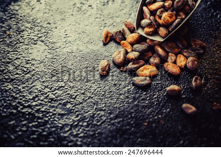 cocoa beans on a dark background, with place for your text - stock photo