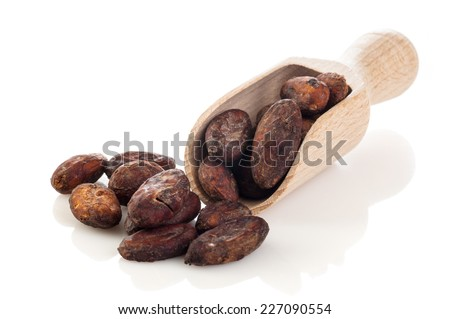 Cocoa beans on the wooden scoop isolated on white background - stock photo