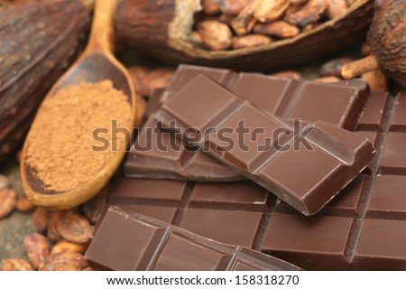 Cocoa beans with chocolate