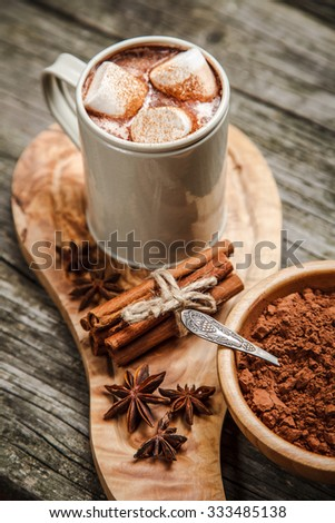 Cocoa drink with marshmallows and cinnamon - stock photo