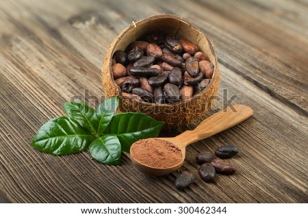 Cocoa powder and cocoa beans on wooden - stock photo
