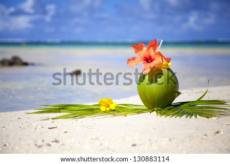 Coconut at the beach of Mauritius - near Belle Mare at the paradise island. - stock photo