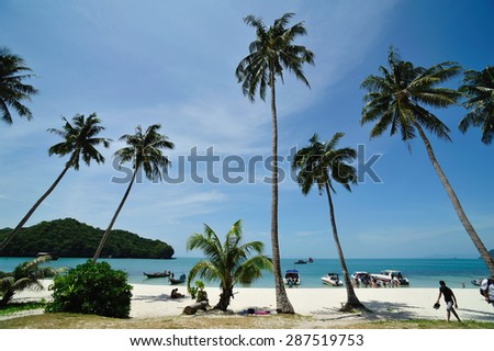Coconut beach in Cow sleep (Wua Ta Lap) Island . Mu Ko Ang Thong National Park. Surat Thani Province, southern Thailand.