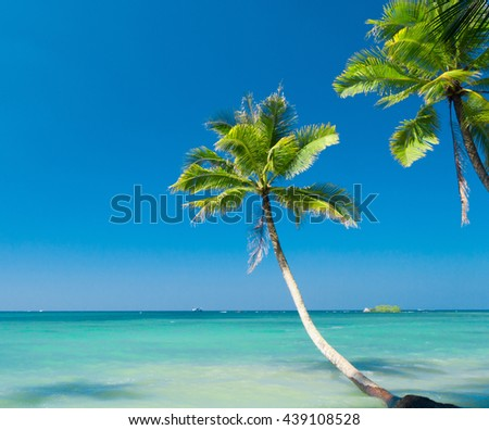 Coconut Coast Beautiful Beach  - stock photo