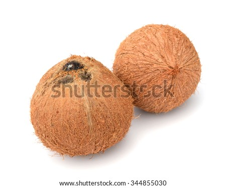 Coconut. Coco Nut isolated on white Background