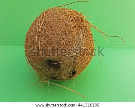 Coconut (cocos nucifera) nut over light green background - stock photo