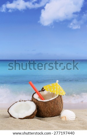 Coconut fruit in summer on the beach and sea with copyspace - stock photo