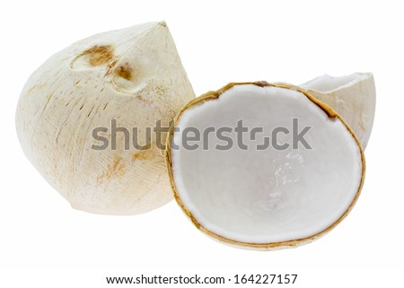 Coconut fruit isolate on white background