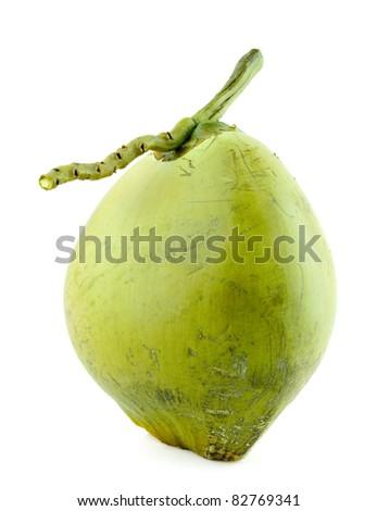Coconut Fruit on white background. - stock photo