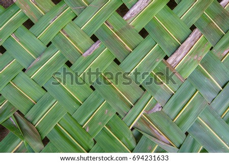 Coconut leaves pattern background