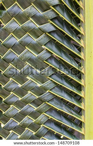 Coconut leaves woven  - stock photo