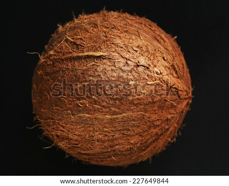 Coconut on black background - stock photo