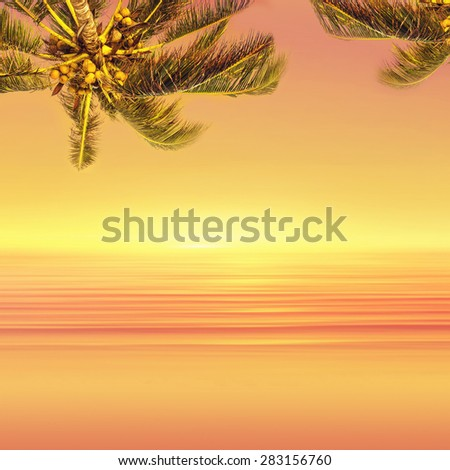 Coconut palm tree and sunset ocean landscape. Tropical paradise.