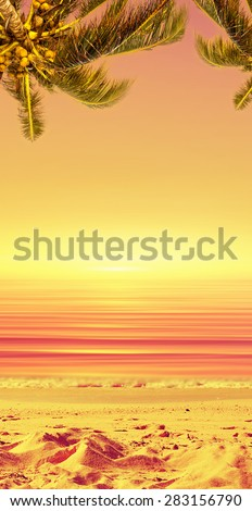 Coconut palm tree and sunset ocean landscape. Tropical paradise. Vertical view. - stock photo