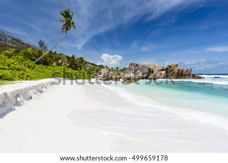 Coconut palm tree and turquoise water at Anse Cocos in La Digue, Seychelles