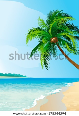 Coconut palm tree . Illustration  of coconut palm tree on tropical beach - Vertical format.  - stock photo
