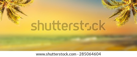 Coconut palm tree over sunset beach. Tropic banner design background. Panoramic view. - stock photo