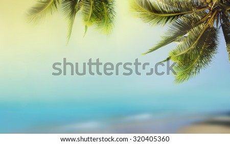 Coconut palm tree over the sunny blurry beach. Tropical beach landscape with blurry ocean, palm leaves, sunshine and sandy beach. Paradise design banner background with booked and vintage effect. - stock photo