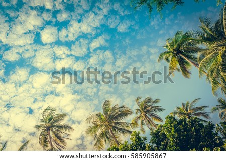 Coconut palm trees at sunny day at blue sky with clouds. Beautiful sea sunset nature background. Travel concept. Photo from Railay Beach, Krabi, Thailand. Vintage filter and boost up color processing.