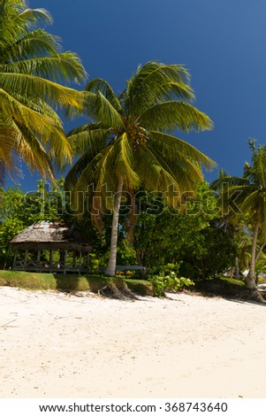 coconut palm trees on white sand beach with crystal clear blue sea on pasific island