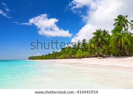 Coconut Palm trees on white sandy beach in Saona island, Dominican Republic - stock photo