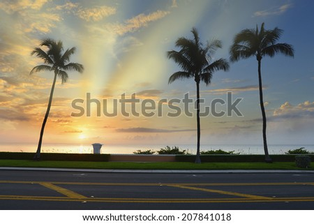 Coconut palm trees silhouette on sunrise tropical beach. Nature background with lifeguard station at Palm Beach, Florida, United States. - stock photo