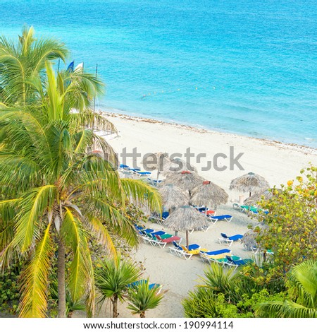 Coconut palms and thatched umbrellas at the beautiful Varadero beach in Cuba - stock photo