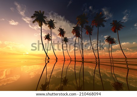 coconut palms at dramatic tropical yellow sunset over calm sea - stock photo