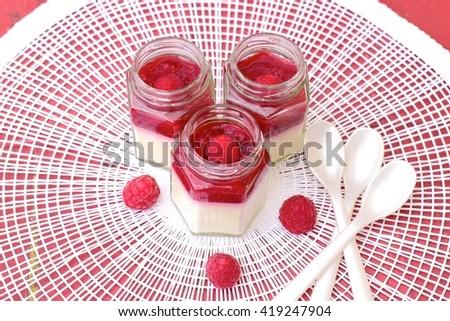 Coconut panna cotta with raspberry sauce - stock photo