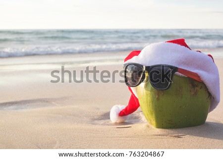 Coconut Santa Christmas Hat Wear sunglasses on the beach. Background is a natural, creative, tropical style background made in Phuket, Thailand.