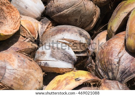 how much fiber in coconut