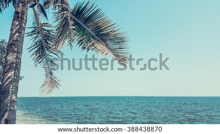 coconut tree on a beach and blue sea, Pastel style - stock photo