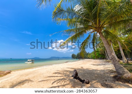 Coconut trees in Phuquoc sea view on a sunny day of summer with beautiful, mellow waves, the fresh feeling of peace, come to our country, Vietnam sunny for beautiful holidays
