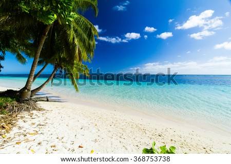 coconut trees on big sunny beach with crystal clear blue sea on pacific island - stock photo