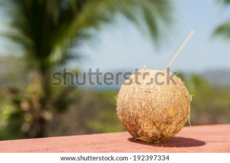 Coconut water drink with tropical ocean landscape - stock photo
