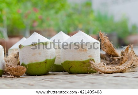 coconut with fragrant and sweet juice inside - stock photo