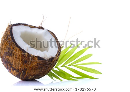 Coconut with leaves on a white background
