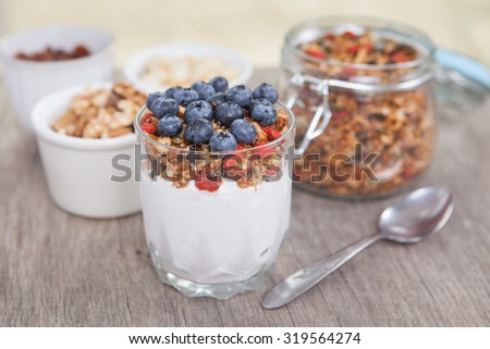 Coconut yogurt topped with grain free oat free paleo style granola made with mixed nuts, seeds, raisins, with blueberries on the top, selective focus - stock photo