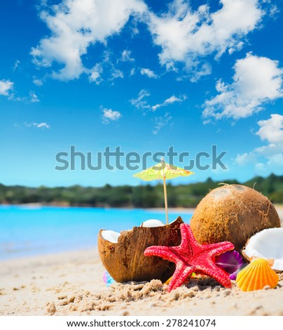 coconuts and starfish by the shore on a tropical beach - stock photo