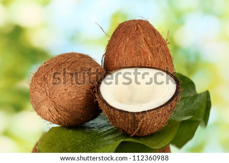 coconuts on green background close-up